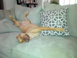 Penny_Exhausted